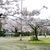 Thumbnail of 功山寺